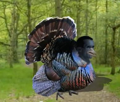 File:Goebbel-turkey.jpg