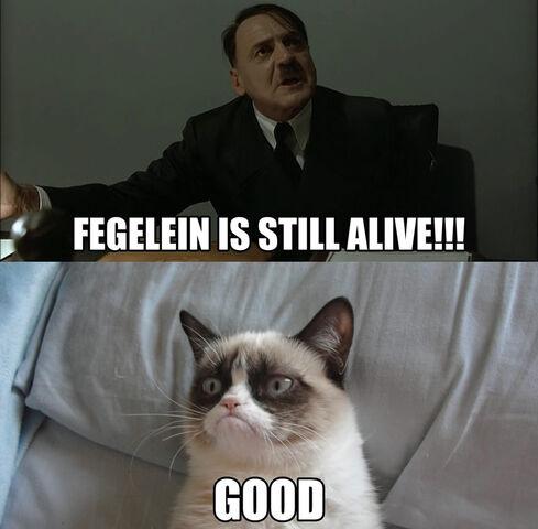 File:Grumpy Cat Fegelein Still Alive.jpg