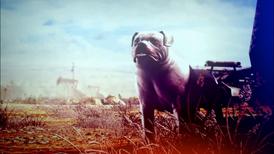 A Dog In Hope, South Dakota