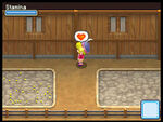 Harvest-Moon-Grand-Bazaar-DS-Screenshot-24mid