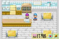 Harvest Moon - Friends of Mineral Town (U) -!- 05