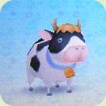Animal cow1