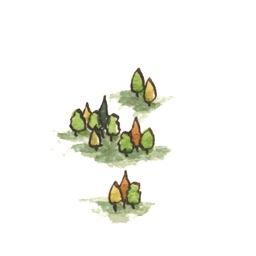 File:Forest1 (2).jpg