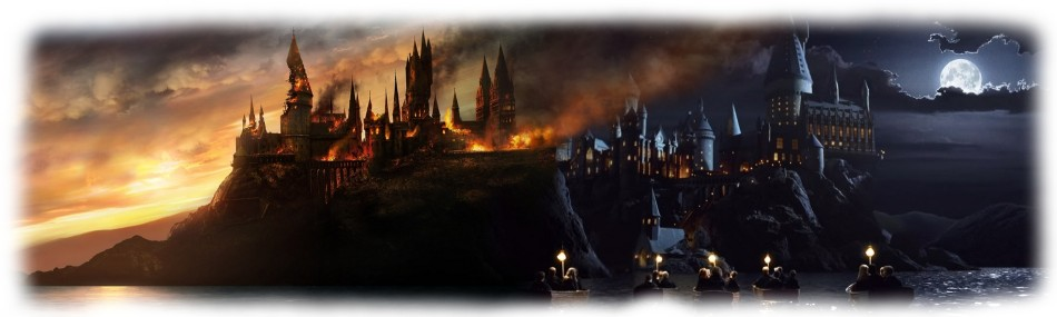 Hogwarts Banner 1