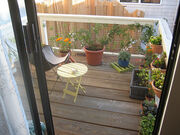 Sarah planted a new fall-winter garden on our deck out back