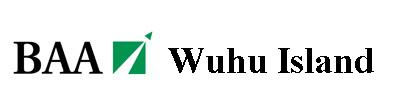 File:Wuhu island 2010 logo.jpg
