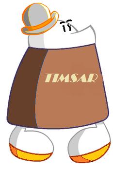 Timsar