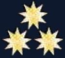 File:Collar Pin RMN Admiral.png