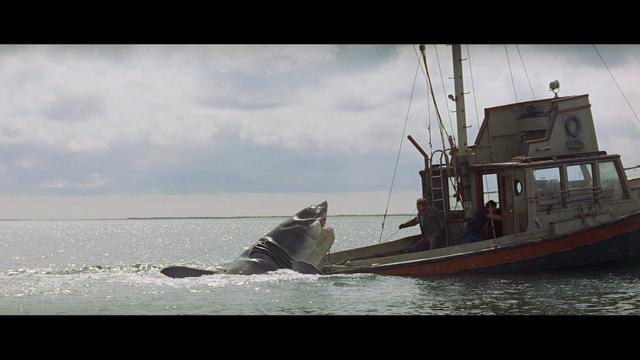 File:Shark boat.png