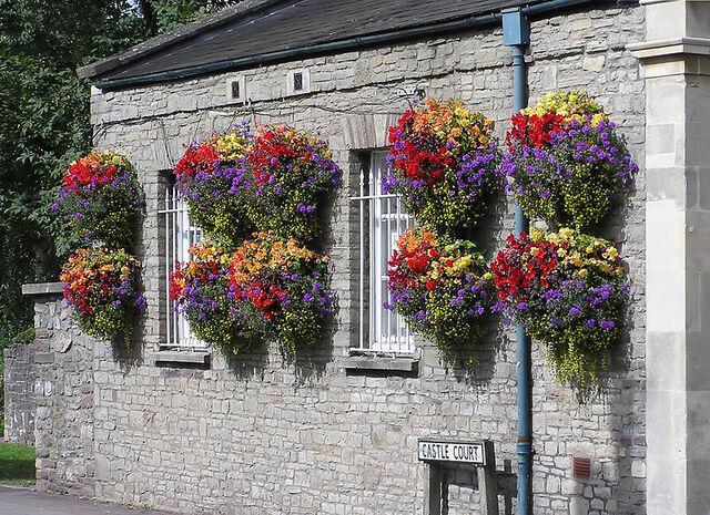 File:Hanging baskets in thornbury arp.jpg