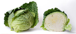 800px-Cabbage and cross section on white
