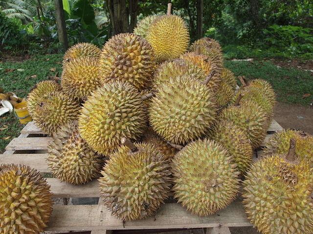 File:800px-Durian.jpg
