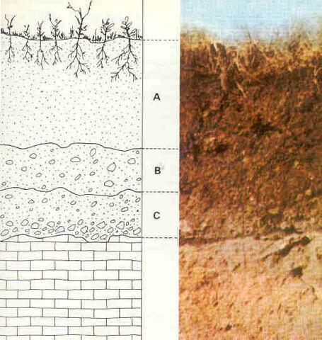 File:Estructura-suelo.jpg