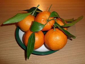 800px-Citrus reticulata fruit 2009 G1