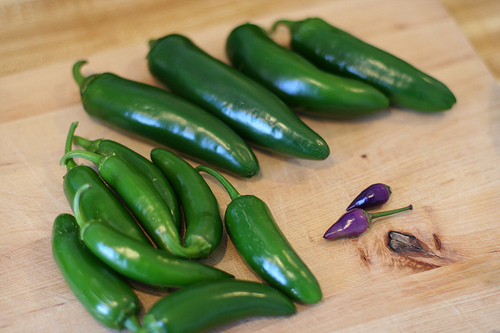 File:Jalapeños for Pickling.jpg