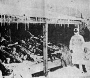 Picture of Manchurian Plague victims in 1910 -1911 (1)