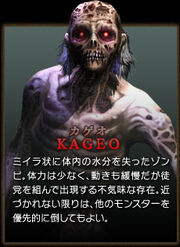 Hod3 enemy kageo