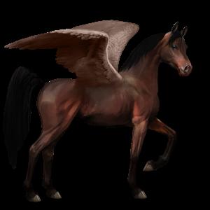 File:Arabian Pegasus - Dark Bay.png