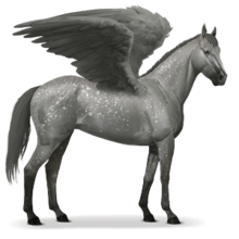 Thoroughbred Pegasus