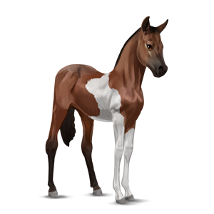 File:Paint Horse Foal - Bay Tobiano.png