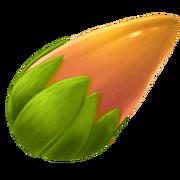Plante-graine-doree