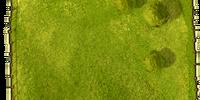 Small fertile meadow