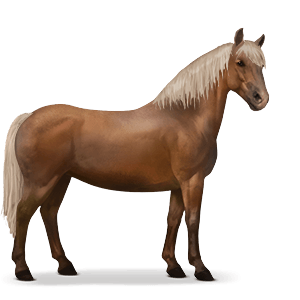 Adult Flaxen Chestnut Haflinger Pony