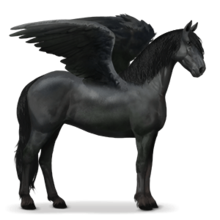 Frisien Pegasus