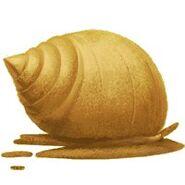 Sandmuschel 2