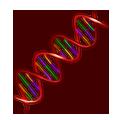 Genetisches Potential