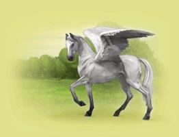 Pegasuskonto.png
