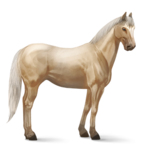 Qarter Horse.Palomino.Altes Design