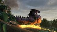 Eruptodon 62