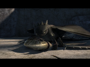 Toothless(14)