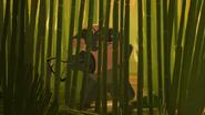 Bamboo 5