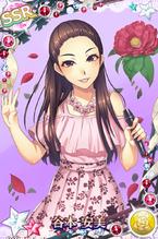 Tanimoto AmiSSR01