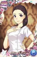 Oda SakuraSSR10