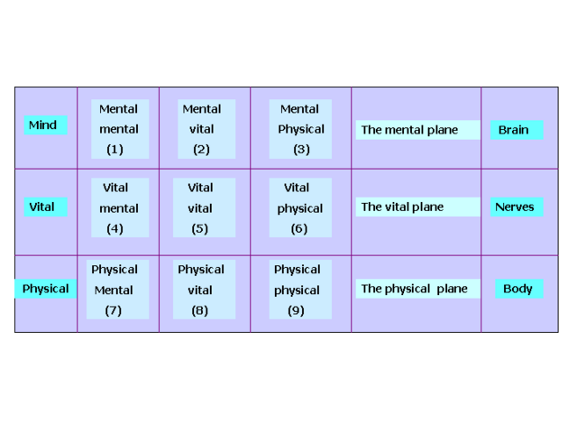 File:Levels1.png