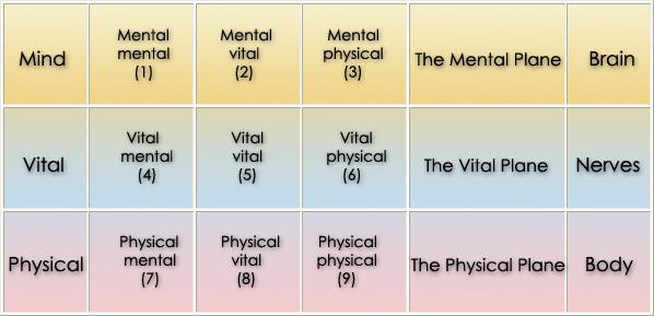 9 levels 1