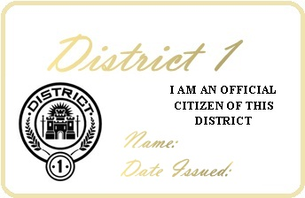 File:District 1 Permit.jpg
