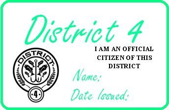 District 4 permit