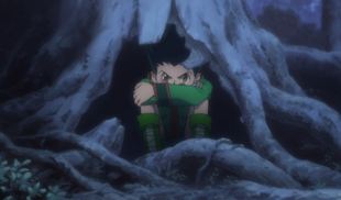 Gon after getting knocked out by Hisoka episode 16