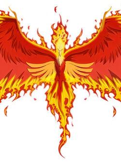Phoenix profile