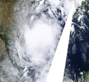 Tropical Storm Don Jul 29 Peak