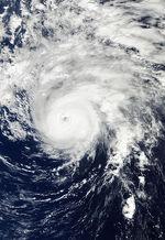 413px-Hurricane Ophelia Oct 1 2011 1425Z