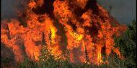 2019 Manitoba wildfire