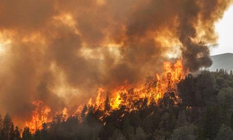 File:Wildfire (2).jpg