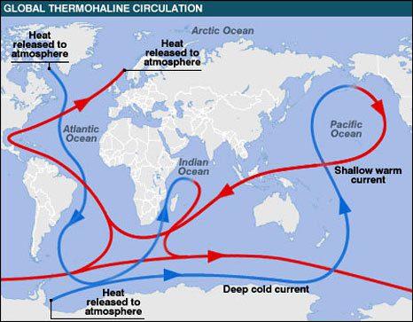 File:Global thermohaline.jpg