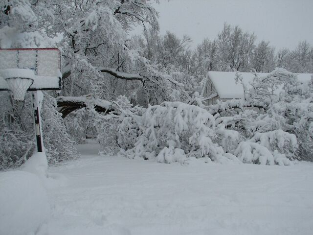 File:Winter-storm-1024x768.jpg