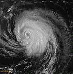 Hurricane Danny (2003)- Close up.jpg